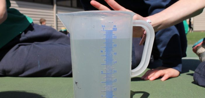 Capacity Capers: Water Relay! Measuring Capacity Lesson Plan for ...