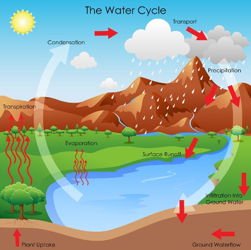 Water In Our World A Science Unit For Grade 12 on Easy Science Fair Project Ideas