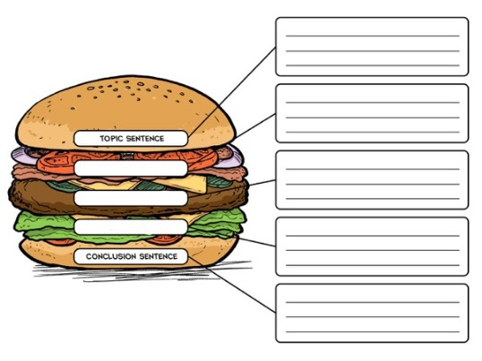 The Good Hamburger - A Writing Lesson on Creating Paragraphs ...