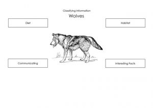 Wolves - Classification