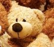 Teddy Bear Multiplication