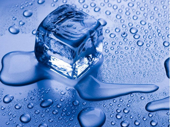 Explore how melting of ice cubes floating in water is influenced by the salinity of the water. Important oceanographic concepts like density and density driven currents are visualized and can be discussed on the basis of this experiment.