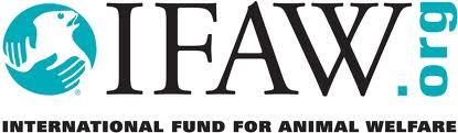 iFAW Logo